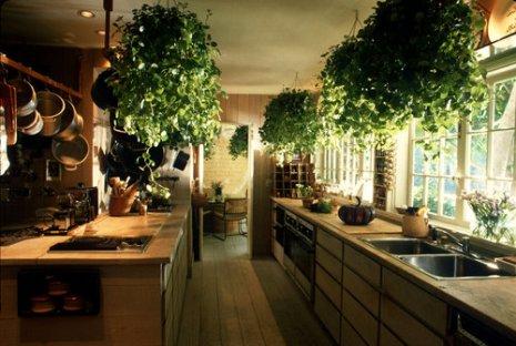 3-cozinha-Feng-Shui
