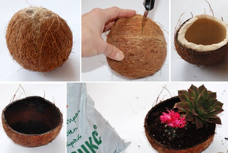 jardim-coco-1