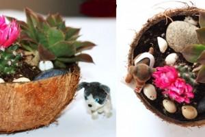 jardim-coco