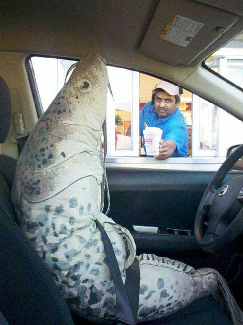 costume-carp-fish-at-drivethru1