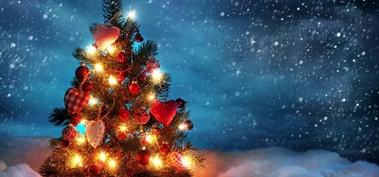 beautiful christmas tree 1280x720