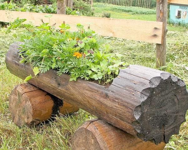 hollowed-log-planter-3