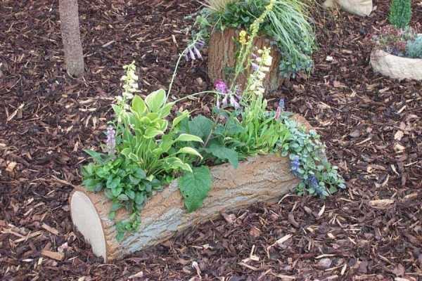 hollowed-log-planter-4