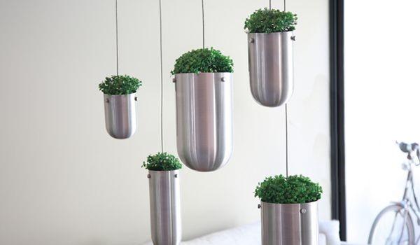 jardim-flutuante-por-gabriella-asztalos