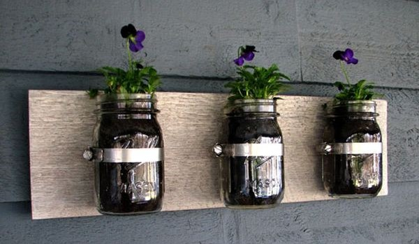 jaros-plantas-parede
