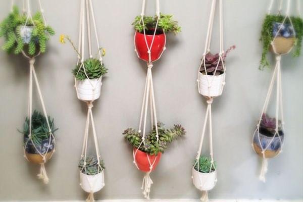 plantas-penduradas-vaso-corda-parede