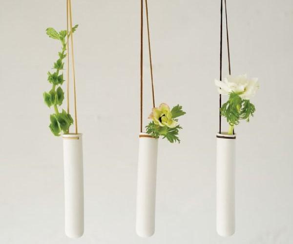 tubo-convertido-plantas-aereas