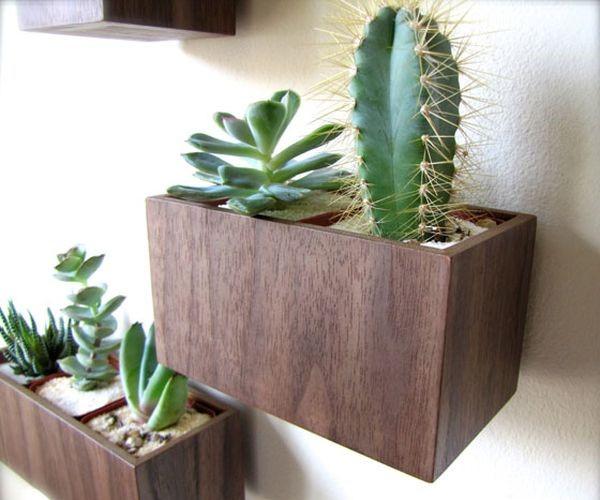 Receita de decora o com plantas a reas - Macetas para pared ...